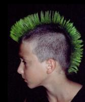 Boy mohawk hairstyle with hair color in green.JPG