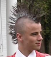 High silver mohawk hairstyle picture.JPG