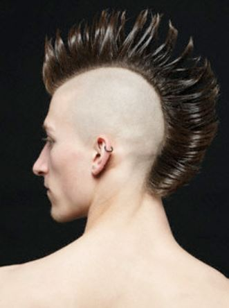 Mens punk hairstyle with mohawk style.JPG