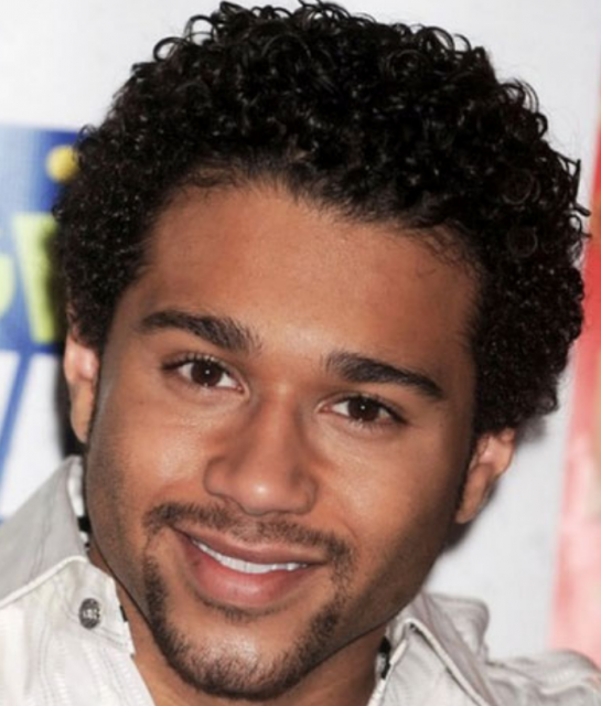 African American mens haircuts with small curls.PNG