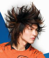 Punk Hair Style Man, Long Hair Style, Highlight - brunette & brown