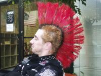 Big funky punk red hairstyle.jpg