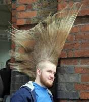 Extreme punk hairstyle.jpg