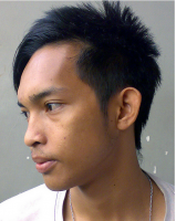 2011 Asian men hairstyles picture.PNG