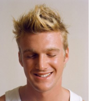 Short shag hairstyle pics men blonde hair.PNG