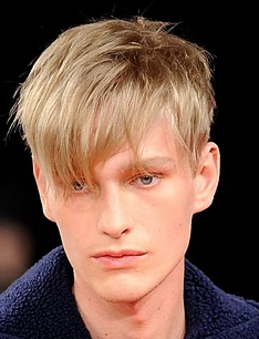Short Layered Men Hairstyles With Long Bangs With Short In The Back Png