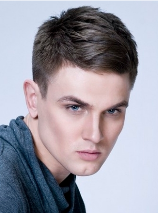 Short Hair Cuts  Guys on Men 2012 Haircuts Picture With Chic Short Length Hair Png