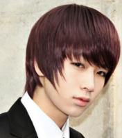 Asian Medium layered and wispy Hair Style, redish brown.PNG